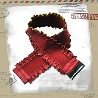 Lacey Edge Stretch Belt Maroon Red