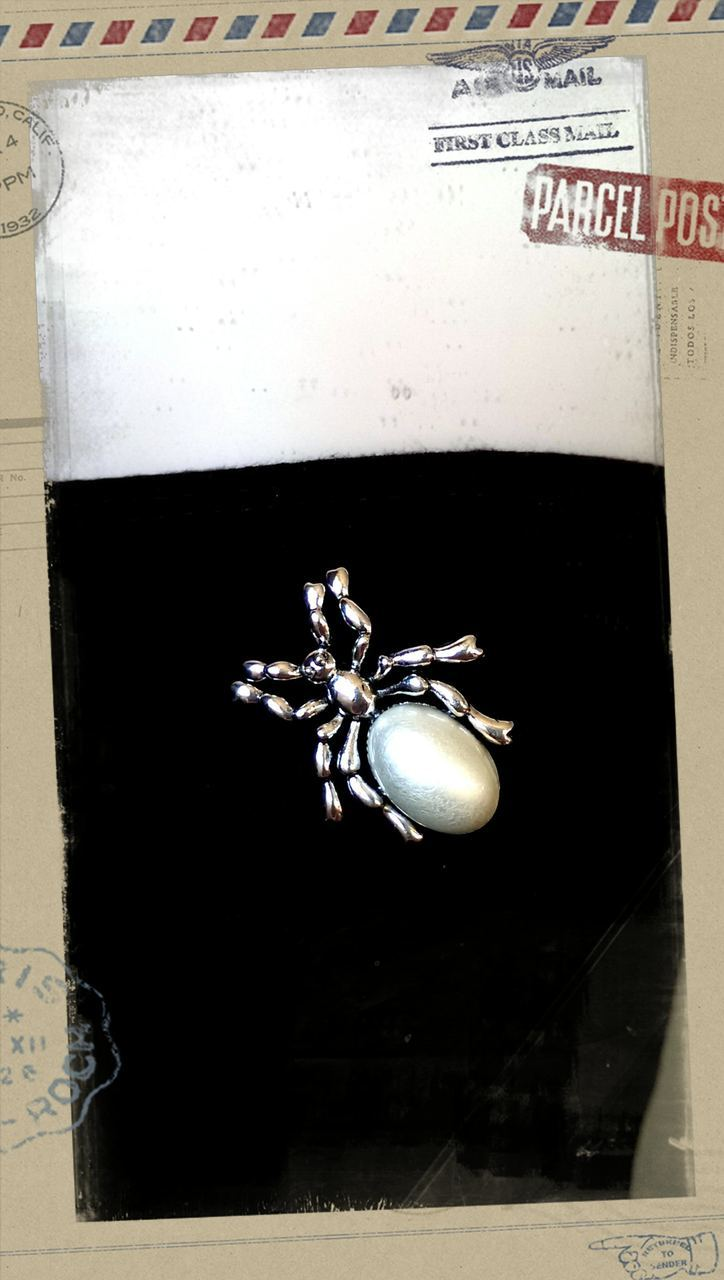 Spider - White Tail